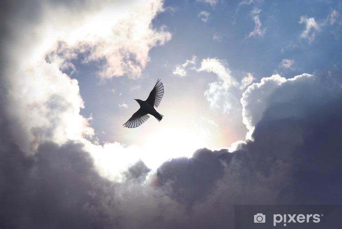 Vinyl-Fototapete Engels-Vogel im Himmel - iStaging