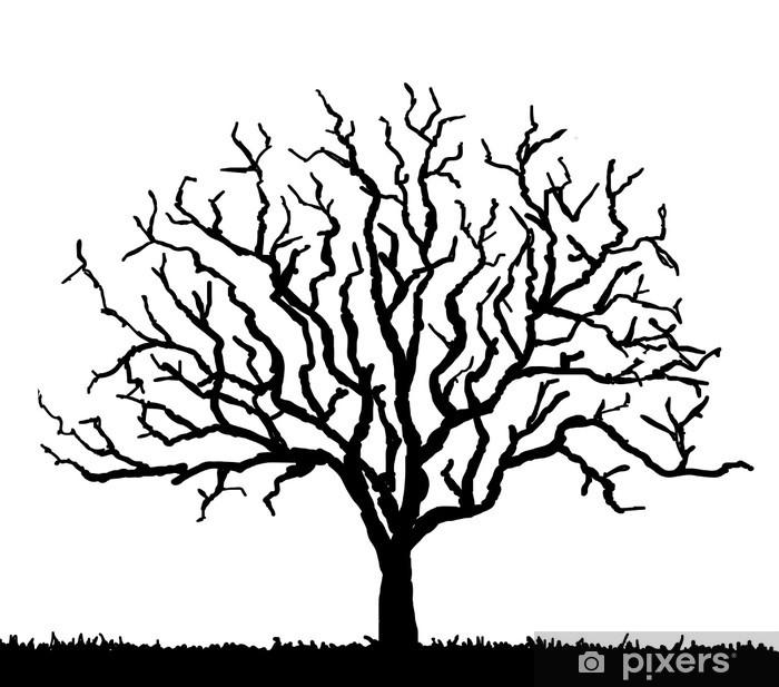 Vinylová fototapeta Černá silueta stromu bez listí, vektorové ilustrace - Vinylová fototapeta