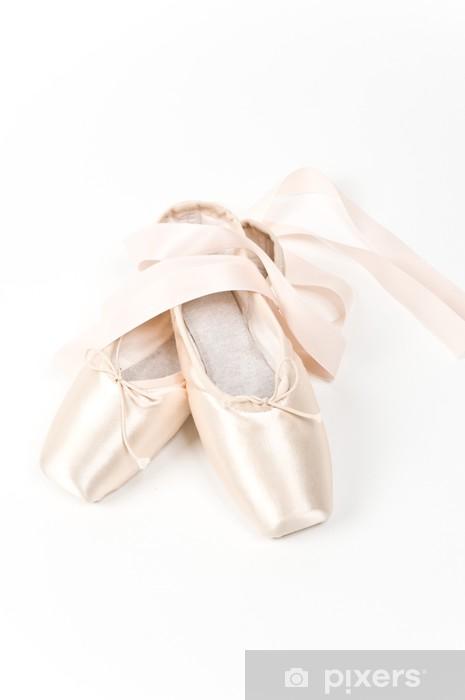 8ec837a7fc8 Fototapeta Dvojice elegantních růžové baletní obuvi • Pixers ...