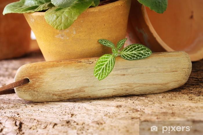 Vinylová fototapeta Holzschildchen für Deine grüne Botschaft - Vinylová fototapeta