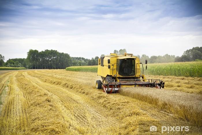 Vinylová fototapeta Kombinovat sklizně pšenice na poli - Vinylová fototapeta