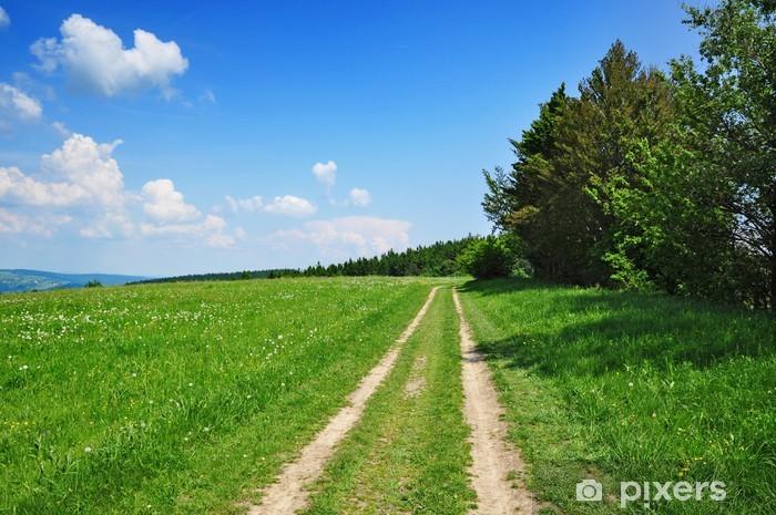 Vinylová fototapeta Letní cesta do zelené přírody - Vinylová fototapeta
