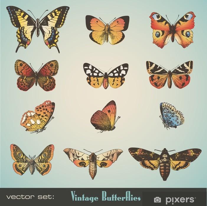 Vinylová fototapeta Vector set: vintage motýli - Vinylová fototapeta