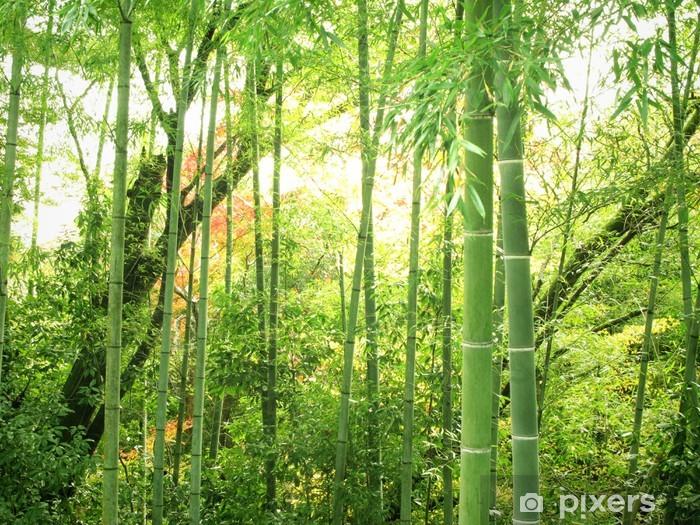 Nálepka Pixerstick Bamboo - Témata