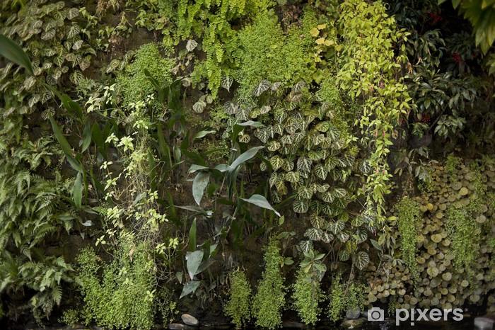 Papier Peint Mur Vegetal 4913 Pixers Nous Vivons Pour Changer