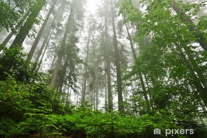 Pixerstick Sticker Dense Forest - Thema's