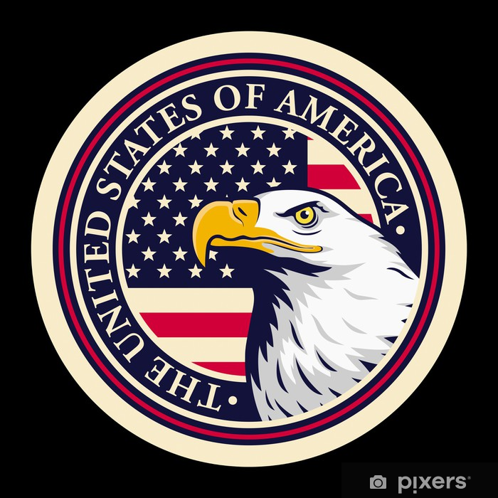 American Bald Eagle Against Usa Flag Background Wall Mural Pixers