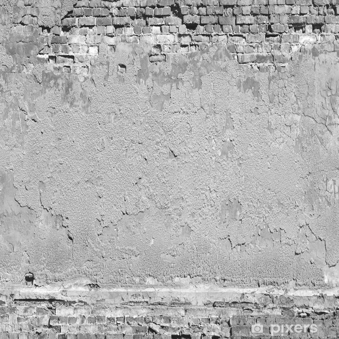 Plaster And Brick Wall Texture Background In Black White Vinyl Mural