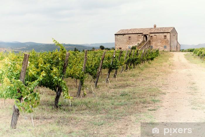 Tuscany Vineyard Vinyl Wall Mural