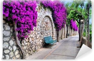 Abwaschbare Fototapete Eine kleine Straße entlang einer alten Mauer mit purpurroten Blumen