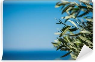 Abwaschbare Fototapete Junge grüne Oliven hängen auf Zweigen