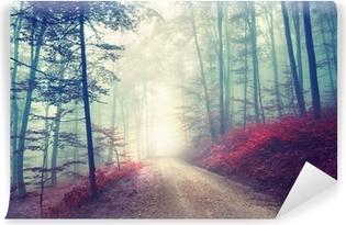Abwaschbare Fototapete Magischer Waldweg