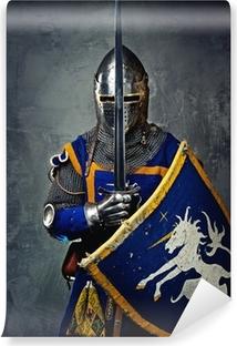 Abwaschbare Fototapete Mittelalterliche Ritter auf grauem Hintergrund.