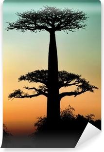 Abwaschbare Fototapete Sonnenuntergang und Baobabs Bäume