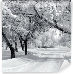 Abwaschbare Fototapete Winter Park, Landschaft