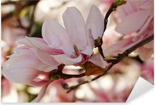Adesivo Pixerstick Albero di Magnolia