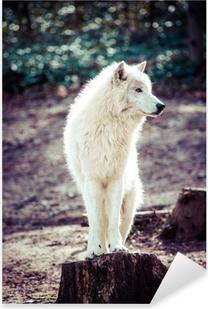 Adesivo Pixerstick Artico lupo bianco