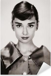 Adesivo Pixerstick Audrey Hepburn