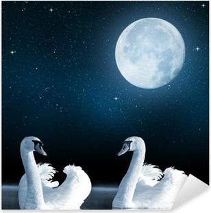Adesivo Pixerstick Cigni sul lago nel cielo notturno.