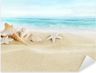 Adesivo Pixerstick Conchiglie sulla spiaggia di sabbia