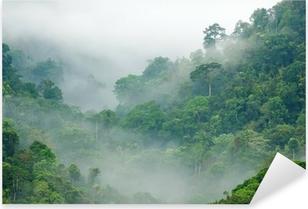 Adesivo Pixerstick Foresta pluviale mattina nebbia