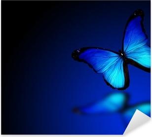 Carta Da Parati Morpho Farfalla Blu Su Sfondo Blu Scuro Pixers