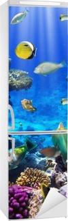 Adesivo per Frigorifero Coral colonia di corallo e pesci