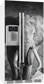 Adesivo per Frigorifero Elephant Bull (lavorazione artistica)