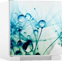 Adesivo per Frigorifero Macro fotografia astratta di semi di piante con gocce d'acqua.