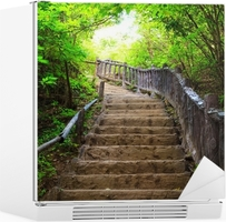 Adesivo per Frigorifero Stairway to foresta