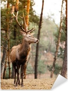 Adesivo Pixerstick Rosso cervo in autunno caduta foresta