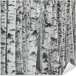 Adesivo Pixerstick Sfondo di inverno Betulla Foresta