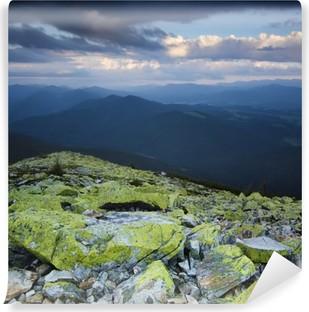 Afwasbaar Fotobehang Carpathian berglandschap
