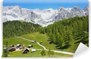 Afwasbaar Fotobehang Dachstein berg in de Oostenrijkse Alpen, Oostenrijk