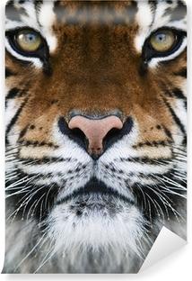 Afwasbaar Fotobehang Een tijger