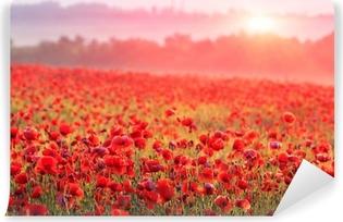 Afwasbaar Fotobehang Een veld vol rode klaprozen in de ochtendmist
