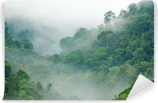 Afwasbaar Fotobehang Ochtendmist in het regenwoud