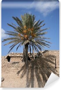 Afwasbaar Fotobehang Ombre et palmier