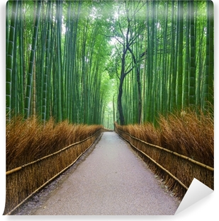 Afwasbaar Fotobehang Pad naar bamboebos, Arashiyama, Kyoto, Japan