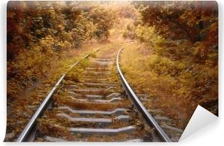 Afwasbaar Fotobehang Spoorlijn in de herfst