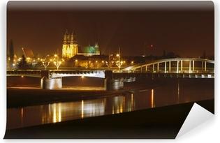 Afwasbaar Fotobehang Warta, brug en kathedraal in de nacht in Poznan, Polen.