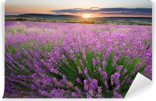 Afwasbaar Fotobehang Weide van lavendel