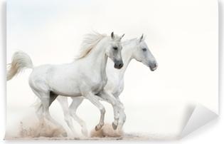 Afwasbaar Fotobehang Witte hengsten met galop