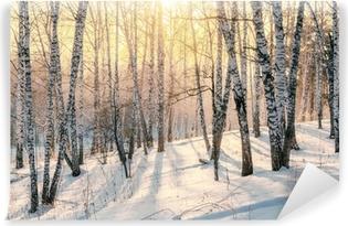 Afwasbaar Fotobehang Zonsondergang in een bos in de winter