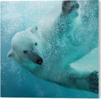 Akryltavla Isbjörn vattens attack
