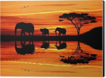 Elephant silhouette at sunset Aluminium Print (Dibond)