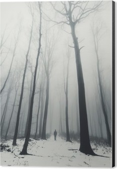 man in forest with tall trees in winter Aluminium Print (Dibond)