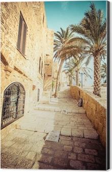 The old streets of Jaffa, Tel Aviv, Israel Aluminium Print (Dibond)