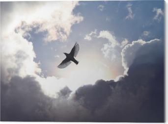 Angel Bird in Heaven Aluminium Tryk (Dibond)