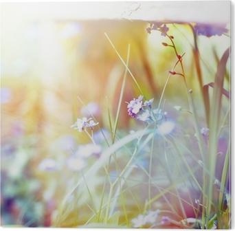 Aluminium Print Mooie bloemen gemaakt met kleur filters